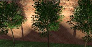 3D Tuinontwerp - Hoveniersbedrijf Sneek - Hoekstra Tuinen Ijlst