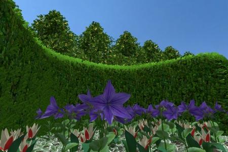 Plantendetail1
