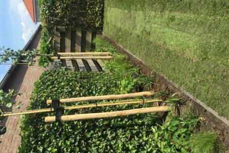 Renovatie achtertuin (10)