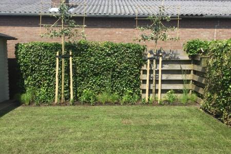 Renovatie achtertuin (12)
