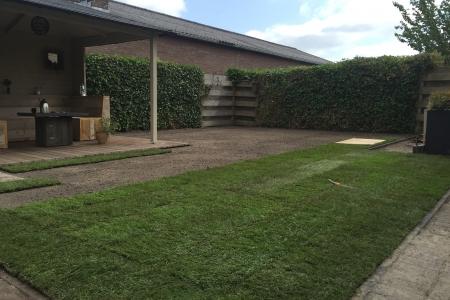 Renovatie achtertuin (5)