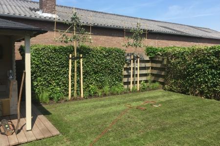 Renovatie achtertuin (9)